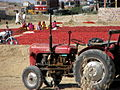 7 Agriculture, Tractor and Rural life in India Red Chili Peppers.jpg