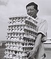 A FARMER OF SDE WARBURG TAKING EGGS FROM HIS CHICKEN RUN TO THE WAREHOUSE. חקלאי ממושב שדה ורבורב נושא חבילות ביצים.D842-011.jpg