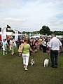 A day at the Aylsham Show - a good turnout - geograph.org.uk - 937024.jpg