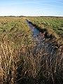 A frozen drain - geograph.org.uk - 1110259.jpg