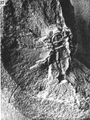 A monograph of the terrestrial Palaeozoic Arachnida of North America photos 36-40 37.png