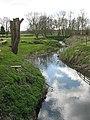 A river runs by... - geograph.org.uk - 153763.jpg