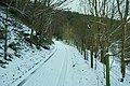 A wintery track - geograph.org.uk - 1639731.jpg