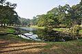 Acharya Jagadish Chandra Bose Indian Botanic Garden - Howrah 2011-01-08 9778.JPG