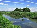 Ageo Haraichinuma River Most Downstream 1.JPG