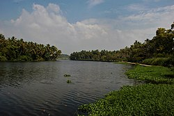 Akkulam Lake, Trivandrum, Kerala, India