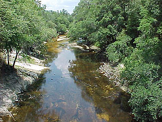 Alapaha River - The Alapaha River at Statenville, Georgia, during a period of drought in 2000