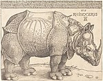 Albrecht Dürer, The Rhinoceros, 1515, NGA 47903.jpg