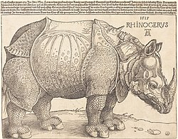 Albrecht Dürer: Rhinoceros