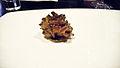 Alinea Maitake mushroom (2771116743).jpg