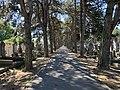 Allée - ancien cimetière de Villeurbanne.jpg