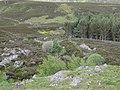 Allt Daimheidh - geograph.org.uk - 845607.jpg