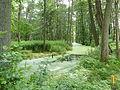 Altwigshagen Park Graben.JPG
