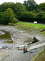Angling by the stream outflow - geograph.org.uk - 1009505.jpg