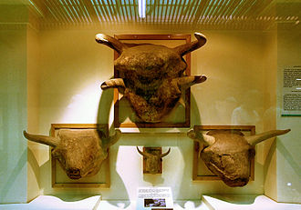 Hattians - The Storm-God, represented by a bull; Museum of Anatolian Civilizations, Ankara