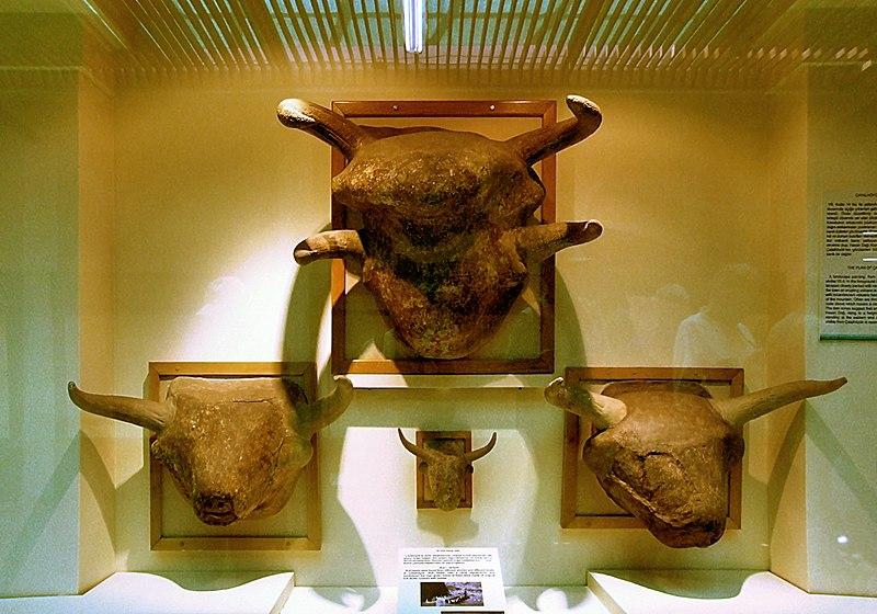 Dosya:Ankara Muzeum B20-08.jpg