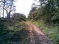 Antigo traçado da ferrovia (Ytuana) em Itu - panoramio - zardeto (5).jpg