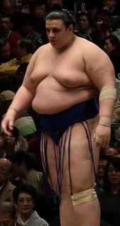 Aoiyama Kōsuke Sumo wrestler