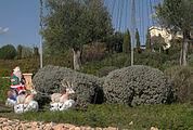 Aphrodite Hills Resort 4644.jpg