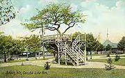 Apple Tree, Canobie Lake Park