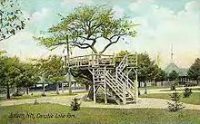 A postcard showing an image of an apple tree in Canobie Lake Park.
