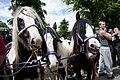 Appleby Horse Fair (7357719660).jpg
