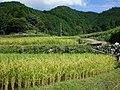Asakayamacho, Kameyama, Mie Prefecture 519-0223, Japan - panoramio - H Okano (1).jpg