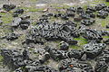 Atauriques en el suelo - Medina Azahara.jpg