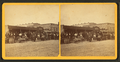 Auction house, Jacksonville, Fla, from Robert N. Dennis collection of stereoscopic views.png