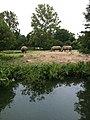 Audubon Zoo - panoramio.jpg