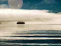 Auke Fog Bay 19.jpg