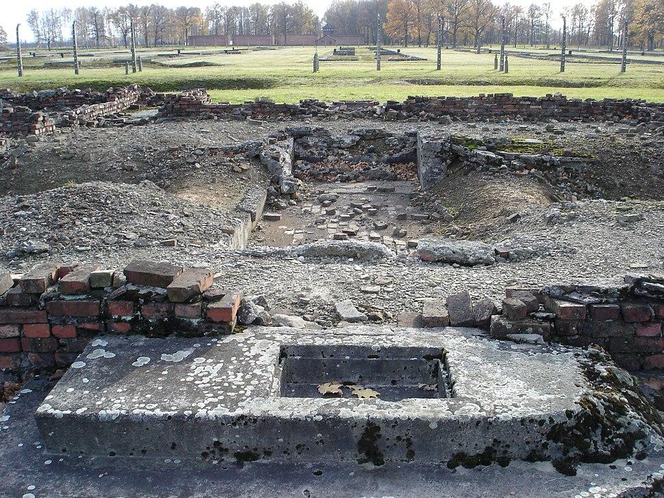 Auschwitz Birkenau Krematorium IV - 05
