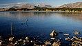 Autumn at Lake Tekapo NZ (8) (8670141901).jpg