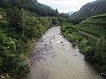 Avisio river from the bridge of Cantilaga - downstream.JPG