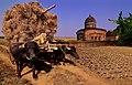 BP1 WK - Radha Shyam Temple - Bishnupur - West Bengal.jpg
