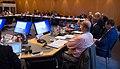 BSPC 2017 Standing Committee by Olaf Kosinsky-25.jpg