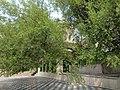 Bairi Sahib Tree at Gurudwara Beri Sahib Sialkot Punjab Pakistan.jpg
