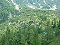 Bansko, Bulgaria - panoramio (45).jpg