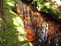 Bardzo rdzawy strumień - panoramio.jpg
