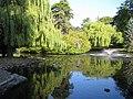 Beacon Hill Park (16.08.06) - panoramio - sergfokin (2).jpg