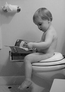 Beginning reader