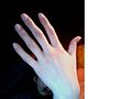 Belle main de femme.jpg