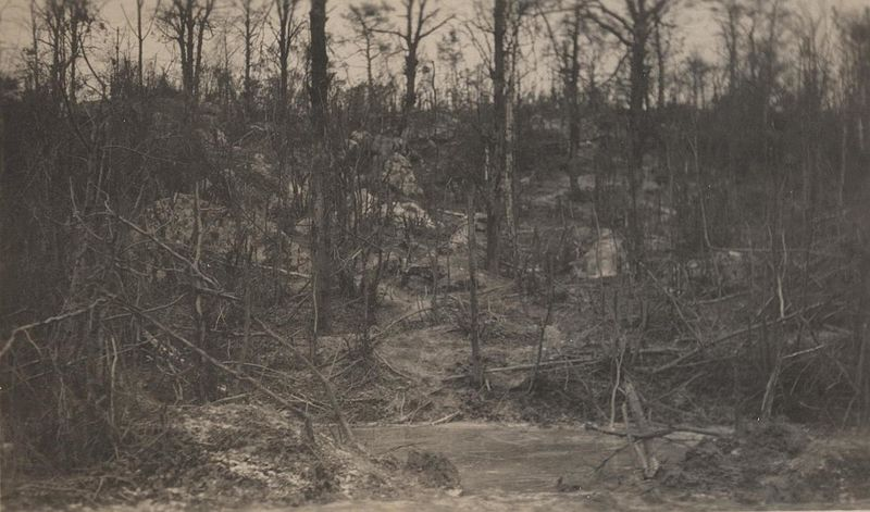 File:Belleau Wood Hillside, circa 1918 (8935802711).jpg