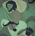 Benin camo.jpg