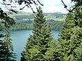 Besse-et-Saint-Anastaise Lac pavin (4).JPG