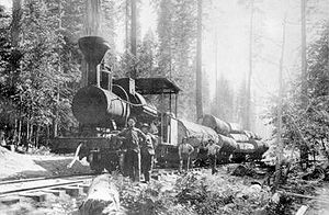 Madera County, California - Logging in the Sierra, Madera County, about 1901
