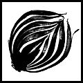 Bican Tomas hasselblad vitaminy 01.jpg