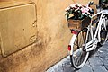 Bicycle with a flower box (Unsplash).jpg