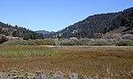 Big Basin Redwoods Park 2 (15400401710).jpg