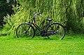 Bike At Vondelpark (226167439).jpeg